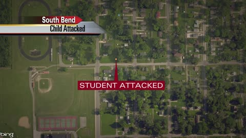 13 year old student sexually assaulted on way to school svu investigating