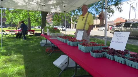 BH Farmers Market takes on food insecurity in city