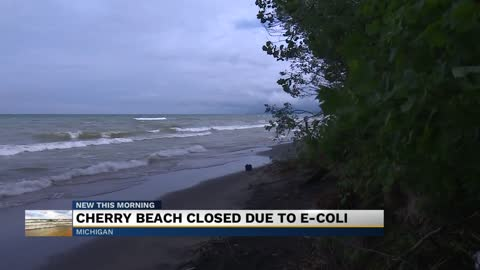 Cherry Beach in Chikaming Township closed due to E. coli