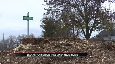 Elkhart christmas tree cut from property owners yard, city says it's in public right-of-way