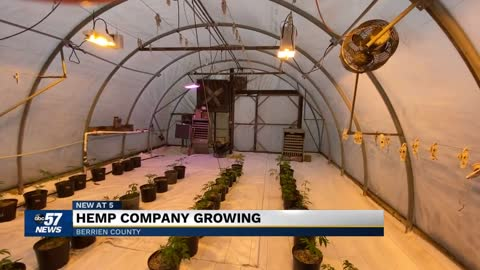 Hemp taking root in Berrien County