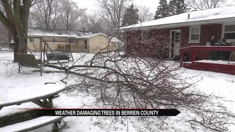 Icy weather impact on Berrien County