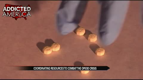 Indiana drug czar urges community effort to combat opioid crisis