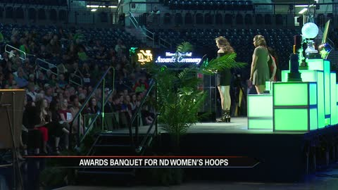 Irish celebrate national championship with postseason awards
