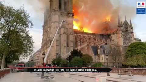 Local architecture professor gives insight into Notre Dame Cathedral...