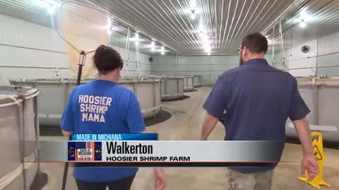 Made in Michiana: Hoosier Shrimp Farm