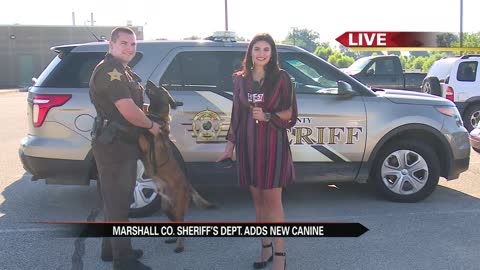 Sniffing out crime: Marshall County welcomes new K9