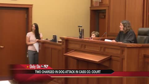 Two men charged in connection with brutal dog attack in court Wednesday