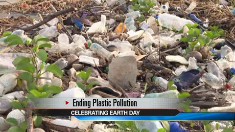 Michiana groups celebrate Earth Day