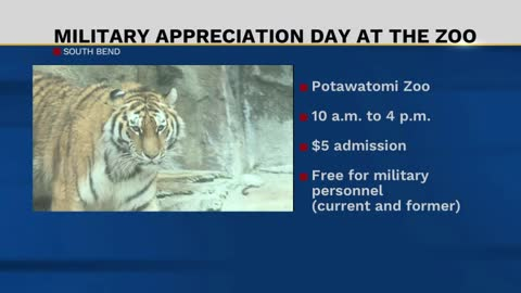 Military personnel get a free visit to the zoo