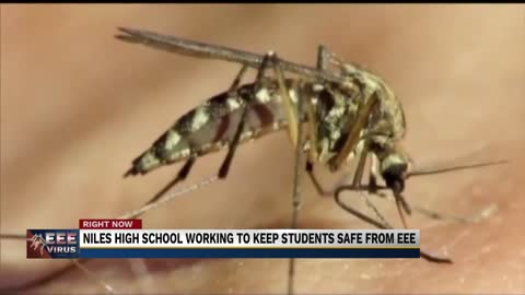 Niles Community Schools responds to mosquito-borne virus concerns
