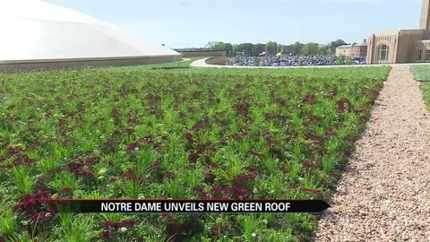 Notre Dame unveils largest roof greenscape in Indiana