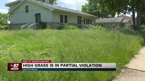 "Homeowner stops mowing lawn claiming it's ""Wildlife Habitat"""