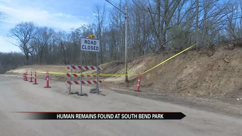 Human skull found near Pinhook Park