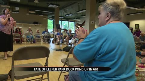 Talks continue on the fate of Leeper Park's duck pond