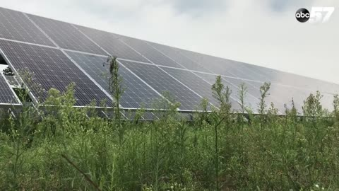Ancilla College makes the switch to solar power