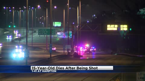 UPDATE: 15-year-old boy shot and killed on I-41 identified, two in custody