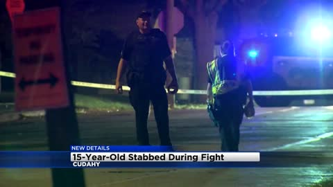 """We saw them dragging each other:"" Neighbors witness fight which left 15-year-old stabbed in Cudahy"