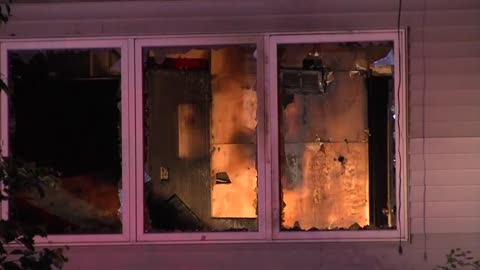 Seven dogs die in north side house fire