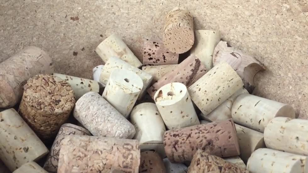 Wisconsin cork plays a huge part in space exploration