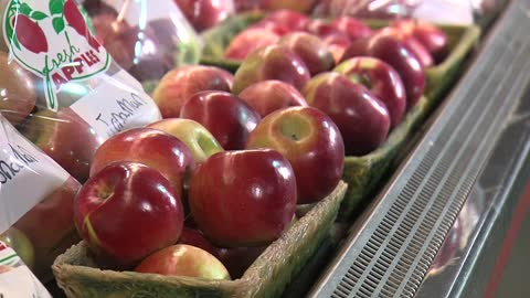 Get going to the apple orchards while there's still time for picking