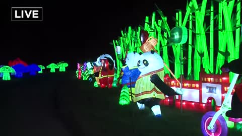 "Panda Power is this year's central focus at ""China Lights"""