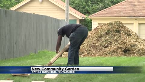 Marcus Garvey Community Garden has sprouted near 37th and Burleigh