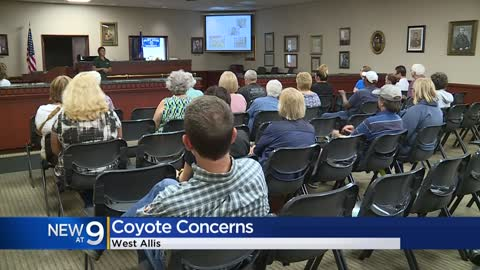 West Allis residents attend informational meeting after recent coyote sightings