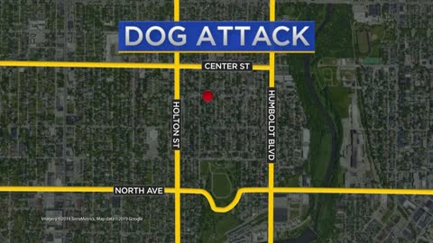 Dog bites three people in Riverwest neighborhood, one taken to hospital