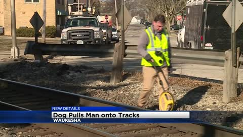 UPDATE: Investigators believe dog pulled man onto tracks before being hit by train