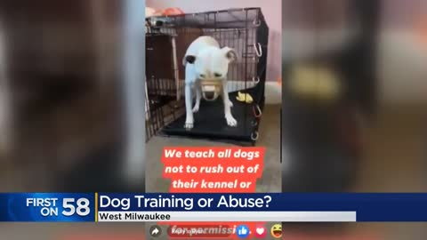 Video showing dog trainer slamming crate door on deaf dog causing...
