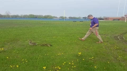 'Duck Parade' tradition at Tremper High School dates back...