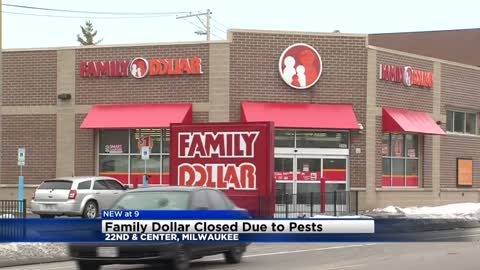 Family Dollar location in Milwaukee closed after rat droppings found