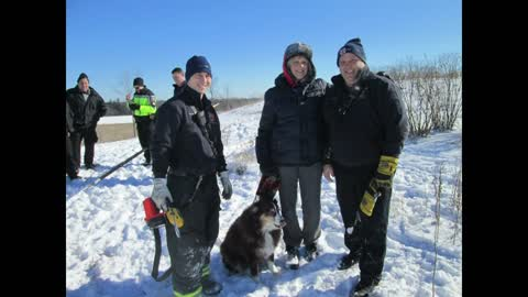 Rescue crews save dog who fell into pipe at the Milwaukee County Grounds