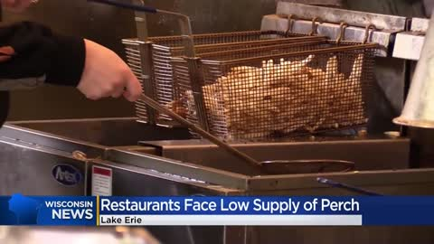 Lake Erie perch shortage has Wisconsin restaurants stocking up