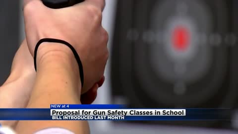 New bill would allow schools to teach gun safety classes