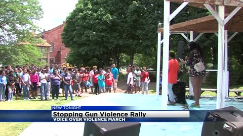 'Voice Over Violence' event held in hopes to stop gun violence