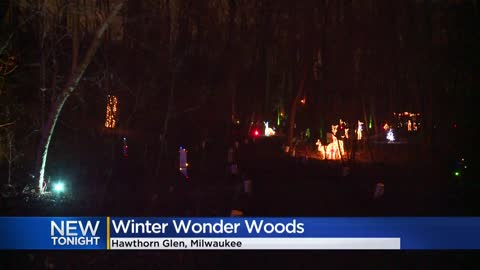Milwaukee Recreation hosts Winter Wonder Woods event