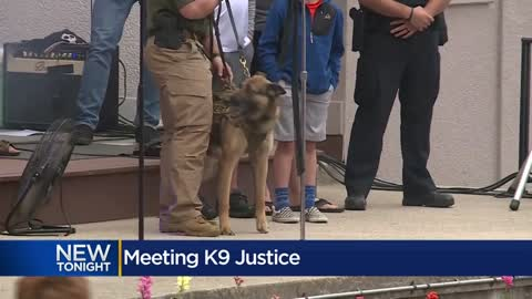 "'He's a hero"": K9 Justice receives award for serving community"
