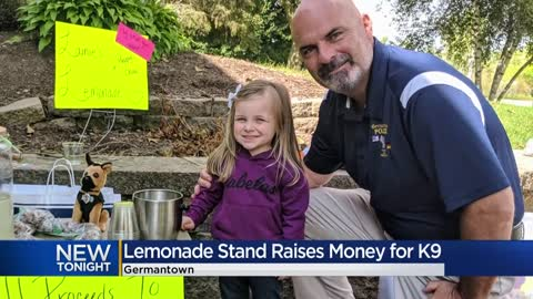 3-year-old's lemonade stand raises hundreds for Germantown...