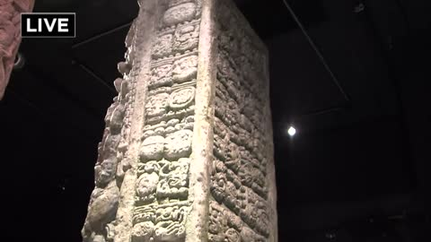 Unearth the ancient Maya civilization at the Milwaukee Public Museum