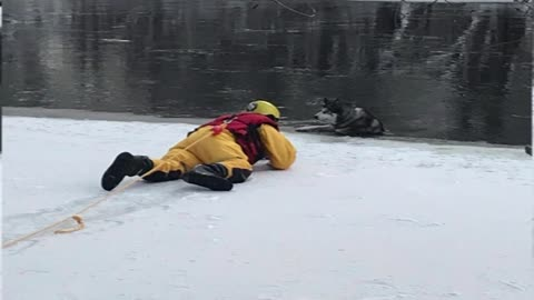 Mequon firefighters rescue dog from icy river