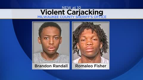 UPDATE: Two teens charged in May carjacking and beating of man near Urban Ecology Center