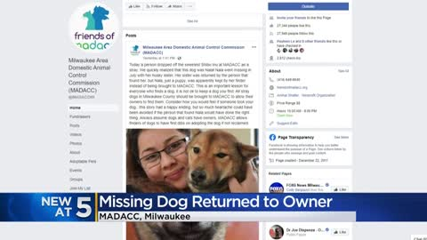 Dog missing since July is reunited with original owner