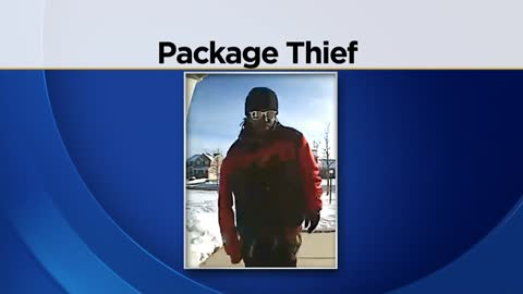 Milwaukee Police searching for package theft suspect