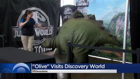 Kids partake in Jurassic World Live Tour-themed STEM activities...