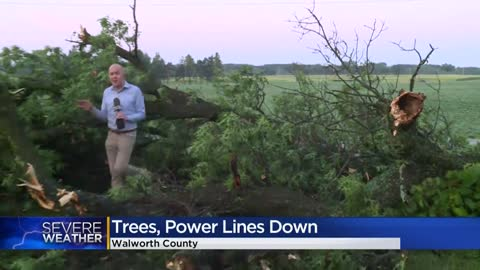 Storm damage, downed trees reported in Pell Lake