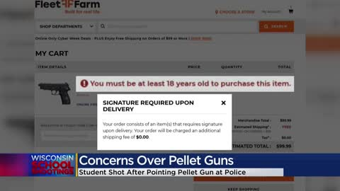 Police trainer talks danger of pellet guns in shooting at Waukesha...