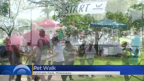 Thousands of dogs, owners fill Veterans Park for 7th annual Pet...