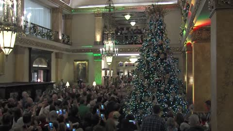 Crowd gathers for annual tree lighting at Pfister Hotel